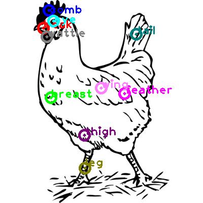 chicken_0004.png