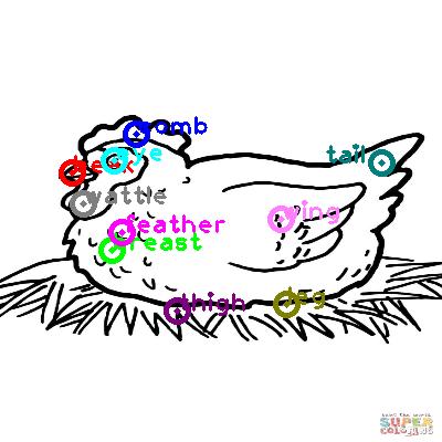 chicken_0022.png