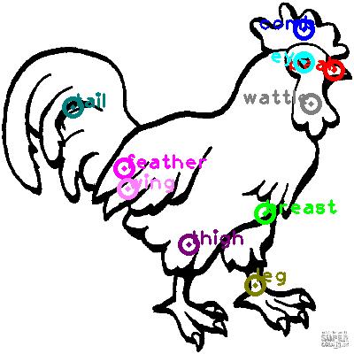 chicken_0028.png