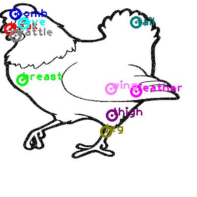 chicken_0035.png