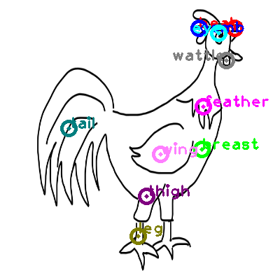 chicken_0045.png