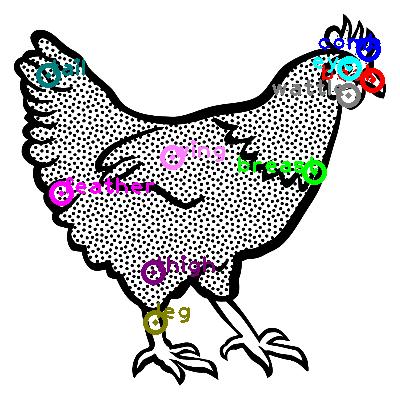 chicken_0057.png