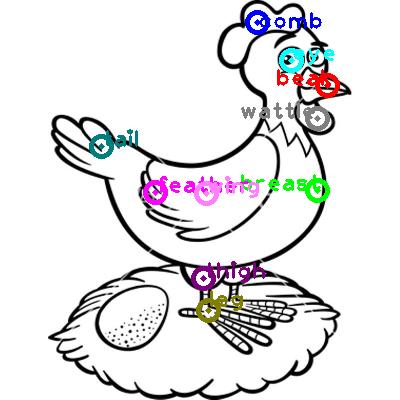 chicken_0068.png