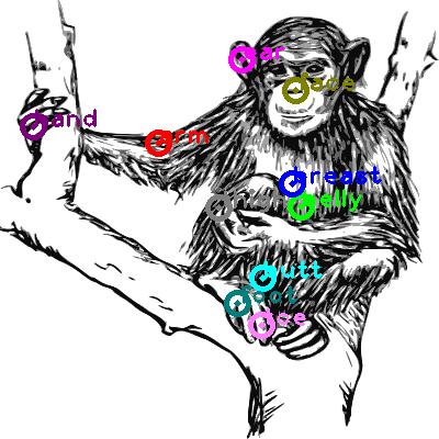 chimpanzee_0010.png
