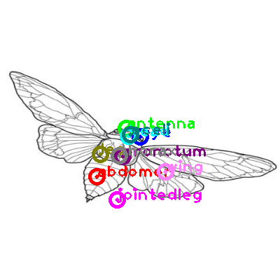 cicada_0013.png