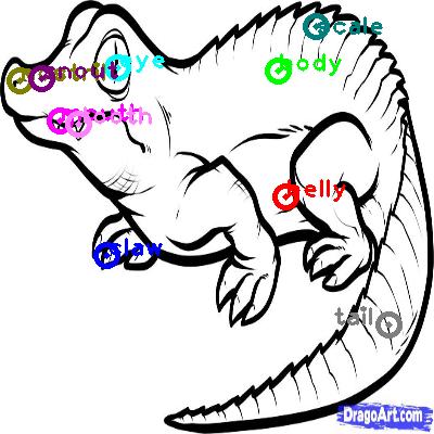crocodile_0004.png