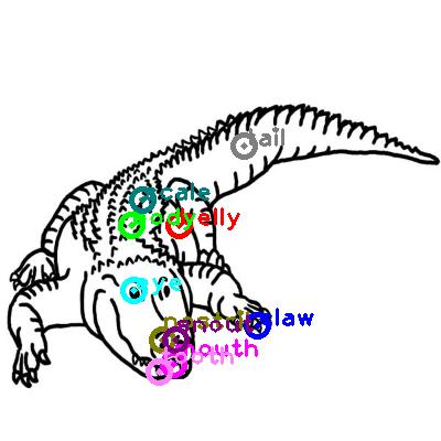 crocodile_0010.png