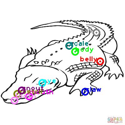 crocodile_0028.png