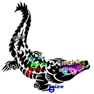 crocodile_0034.png