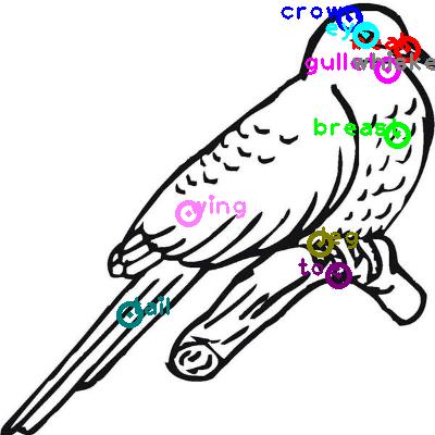 cuckoo_0015.png
