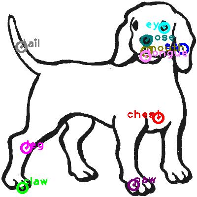 dog_0000.png