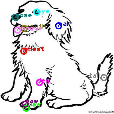 dog_0001.png