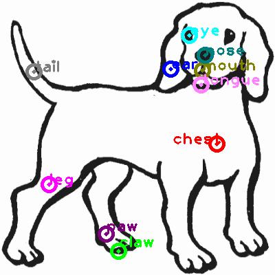 dog_0017.png