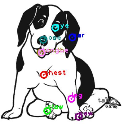 dog_0022.png