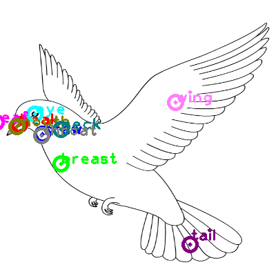 dove_0022.png