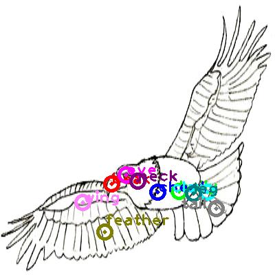 eagle_0004.png