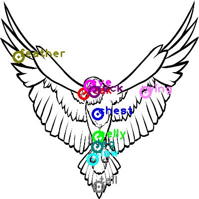 eagle_0007.png