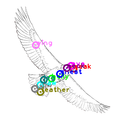 eagle_0008.png