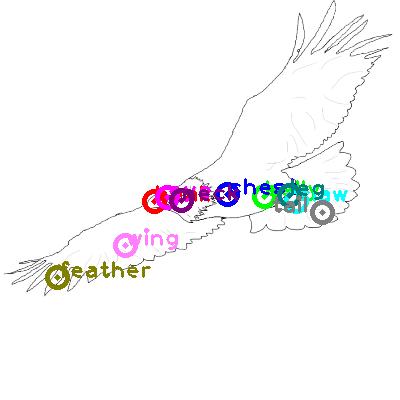 eagle_0016.png