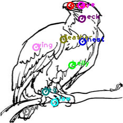 eagle_0024.png