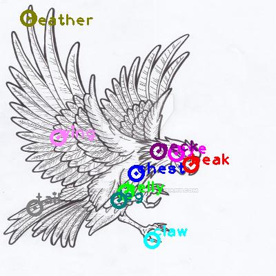 eagle_0030.png