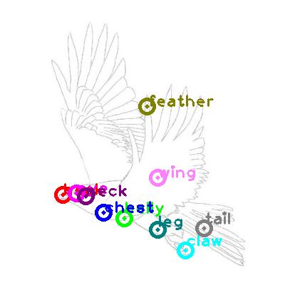 eagle_0034.png