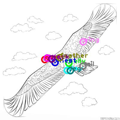 eagle_0036.png