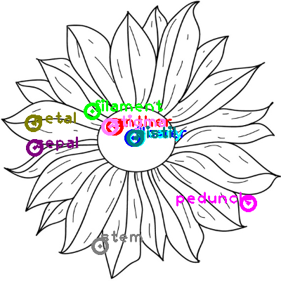 flower_0002.png