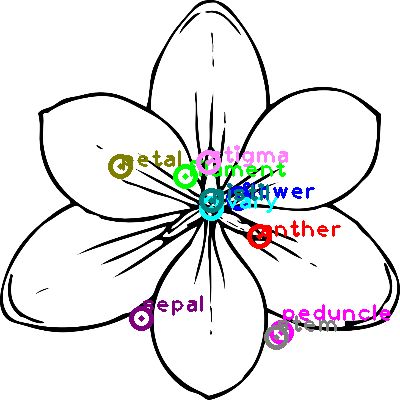 flower_0004.png