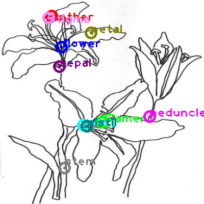 flower_0008.png