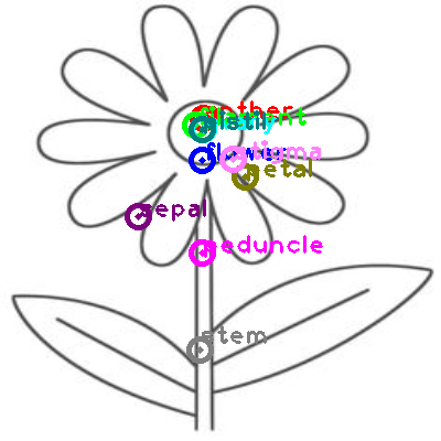 flower_0015.png
