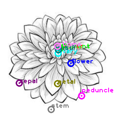 flower_0017.png