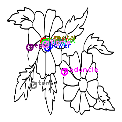 flower_0019.png
