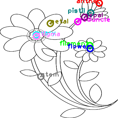 flower_0020.png