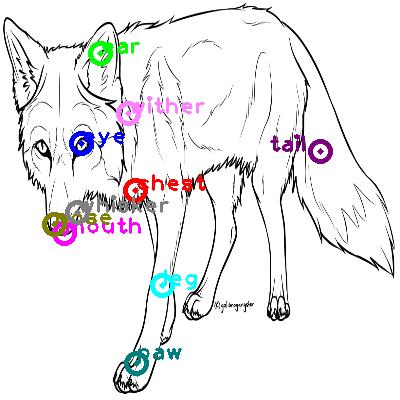 fox_0000.png