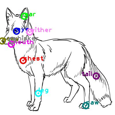fox_0002.png