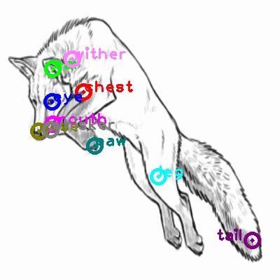 fox_0019.png