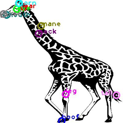 giraffe_0013.png