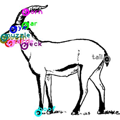 goat_0003.png