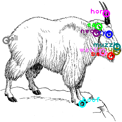 goat_0022.png