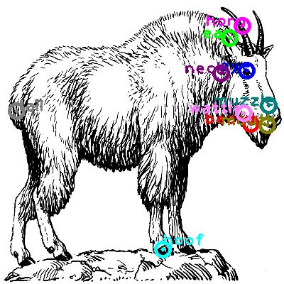 goat_0028.png