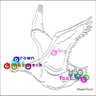 goose_0020.png