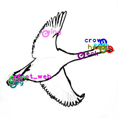 goose_0034.png