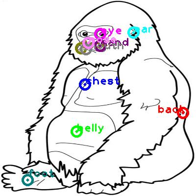 gorilla_0010.png