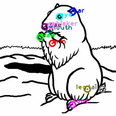 groundhog_0012.png