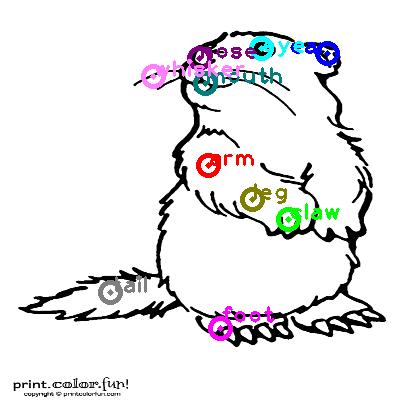 groundhog_0020.png