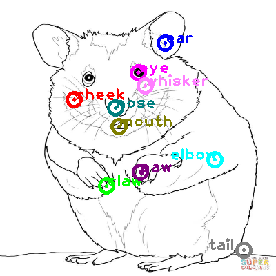 hamster_0007.png