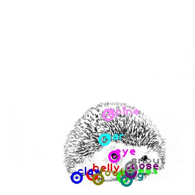 hedgehog_0003.png