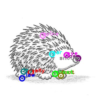 hedgehog_0004.png