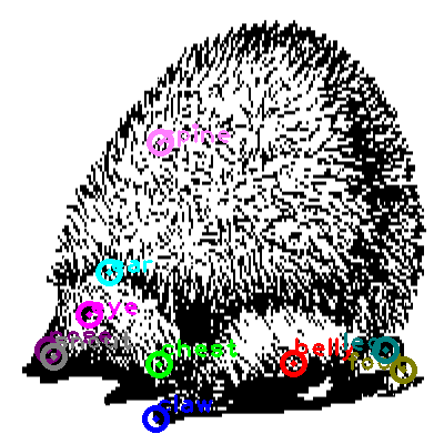 hedgehog_0013.png